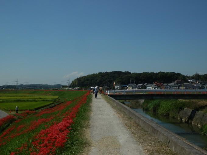 愛知県知多半島 児童文学「ごん狐」で知られる作家、新美南吉の故郷